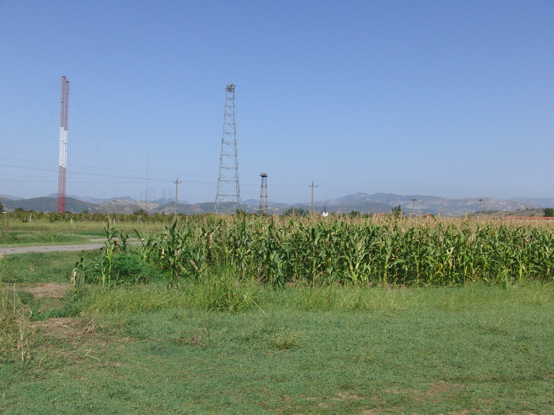 Corn field to the North
