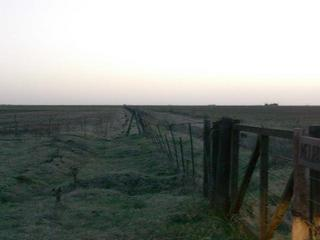 #1: A 1200 mts, sobre el alambrado, la confluencia - At 1200 meters, along the fence, the confluence