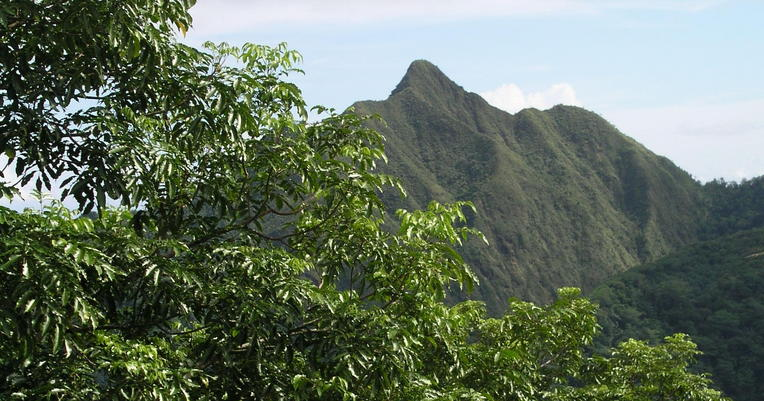 At 2142 feet (653m), Matafao Peak would make a better observation point, but the heavily overgrown trail requires a machete.