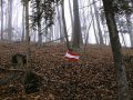 #3: The confluence with austrian flag
