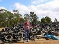 #7: Targ in front of a large pile of old tyres