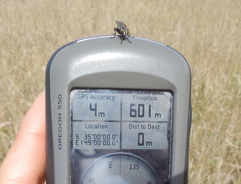 GPS reading with fly