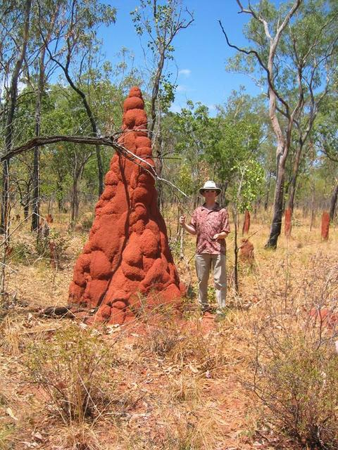 Colin and a termite mound near the confluence