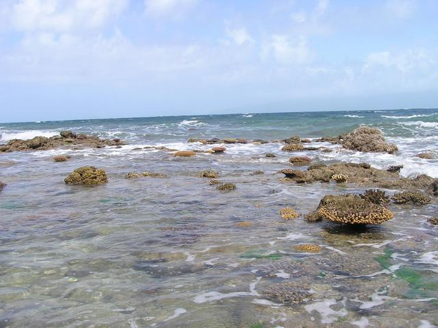 The confluence point is about 6.6 km past this coral reef