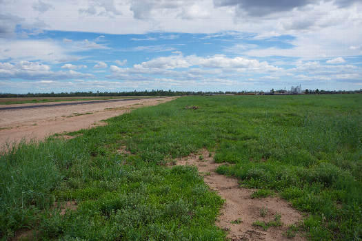#1: The confluence point lies next to a rural road.  (This is also a view to the South, towards a large feedlot, 800m away.)