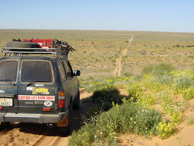 On the Rig Road in the Simpson Desert
