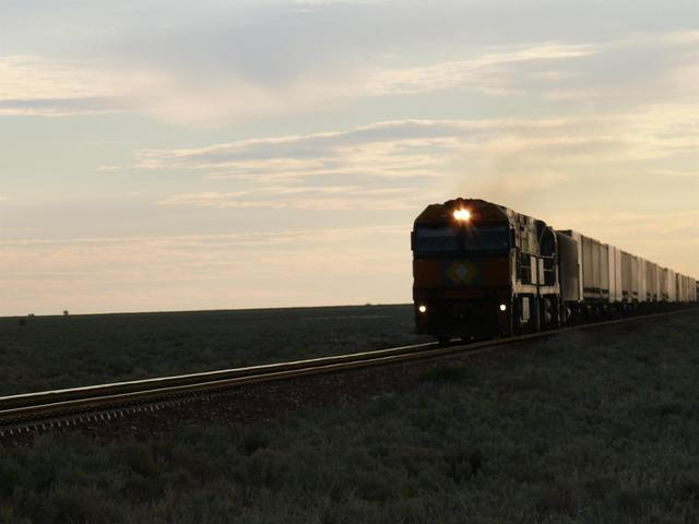 Train from the west late afternoon