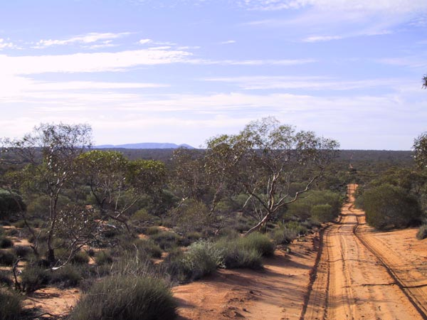 Looking towards Mt Finke from Goog's Track, taken south east of the confluence