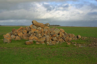 #1: Pile of basalt in field