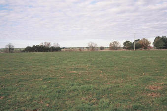 #1: View to the east, toward the Maffra-Sale Road.