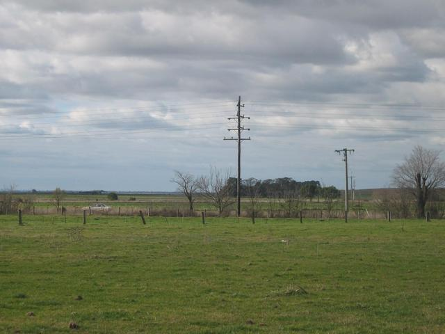 North view