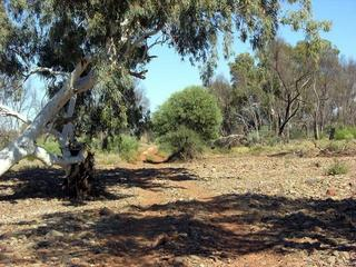 #1: The track crosses Kangaroo Creek, about 7.4km south of the confluence.