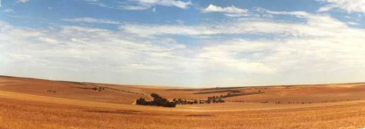 Panorama looking north towards the Marloo Homestead.