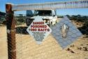 #6: Dingo fence and warning signs