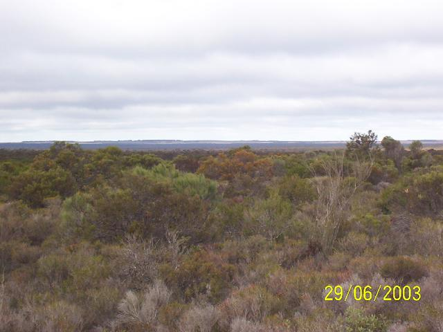 South towards Rabit Proof Fence and farming land