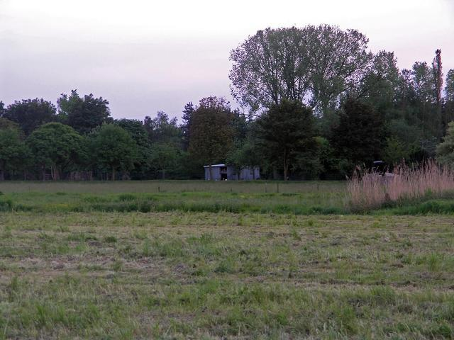 Farm buildings in the distance