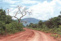 #5: Road across Vão do Paranã