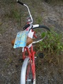 #8: Mode of transport, with a Bahamian license plate that I found near the confluence
