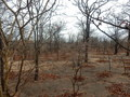#2: View to the South