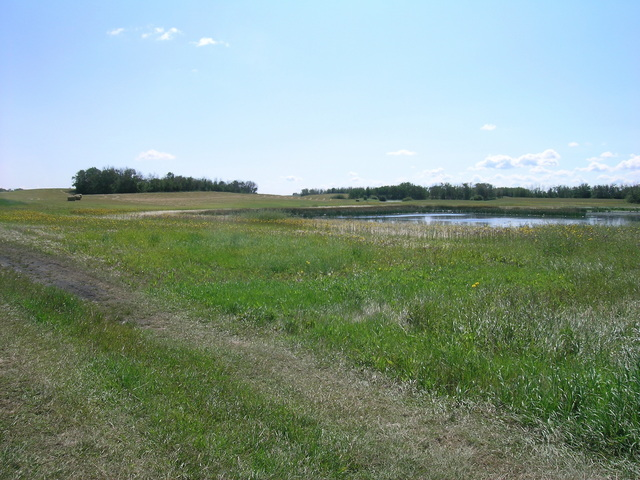 The confluence is just past the hay bales at the left of the photo.