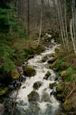 #2: Small creek on Haslam Main logging road