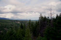 #4: View down the ravine