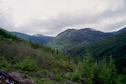 #5: View up the ravine