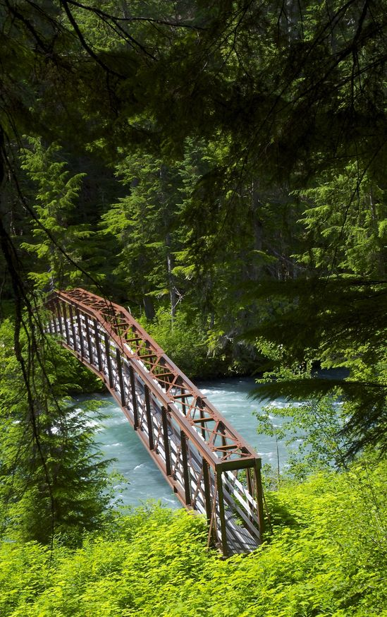 The Cheakamus Creek bridge, en route to the confluence point
