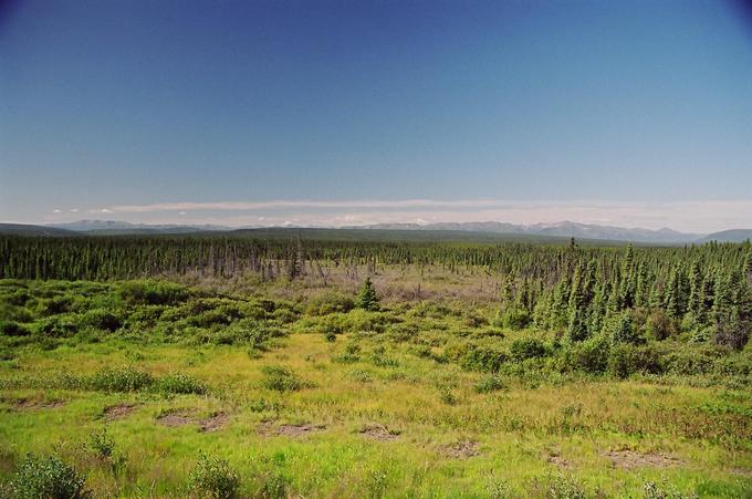 View from Alaska Highway, north of Buckinghorse River
