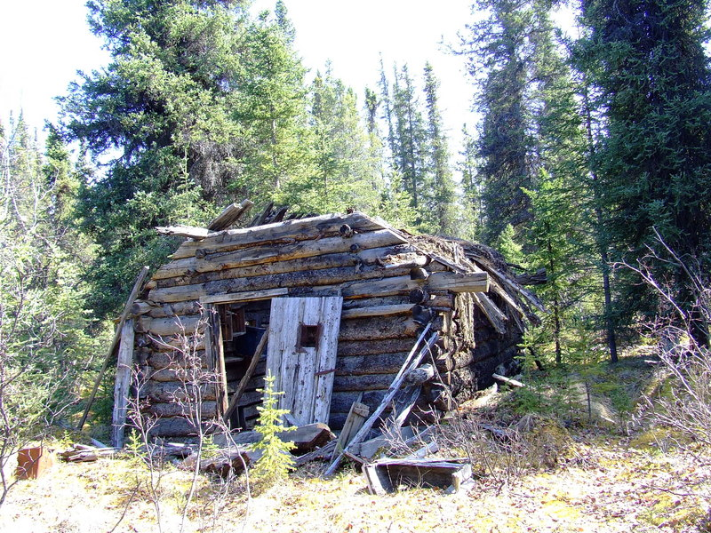 ancient decayed cabin 2km from confluence point