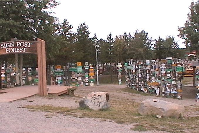 part of the Sign Post Forest