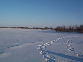 #1: View to the East with Snowshoe Tracks Leading to Confluence