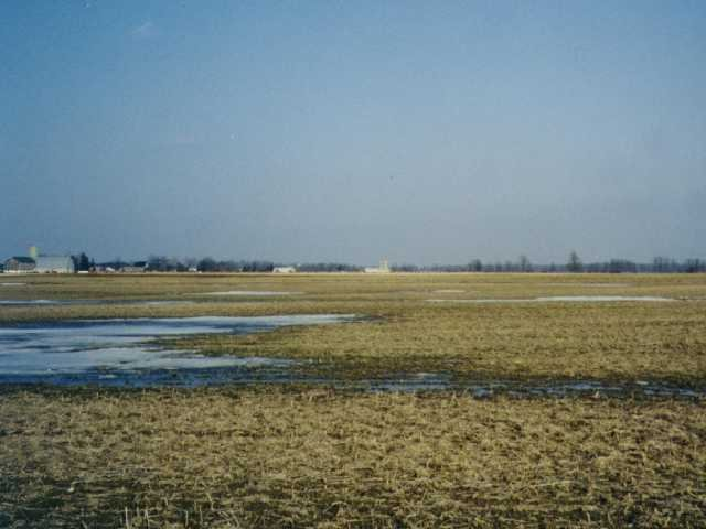 facing east: fields and farms