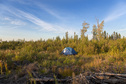 #10: Our tent near logging road