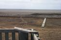 "#8: The VERY dry Wadena ""Wetlands"" as seen from the viewing stand.  The white line on the horizon is the ice on Little Quill Lake."