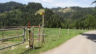 #7: #07_gate to the trail