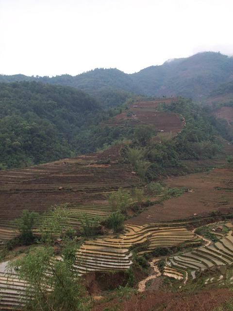 View of terraces on hike up to Mang Gong.