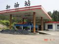 #2: Petrol station with pine forest behind