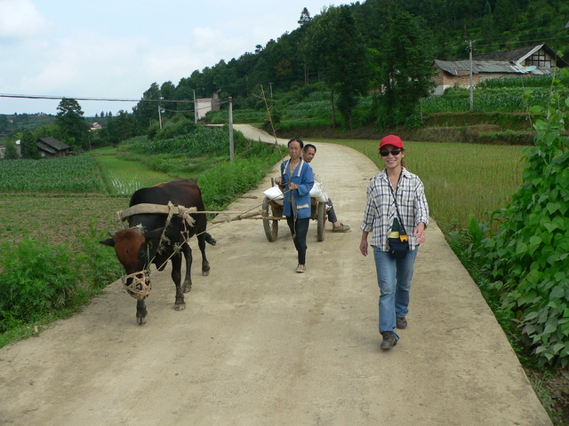 Ah Feng passing a couple and their bullock cart on the concrete road.