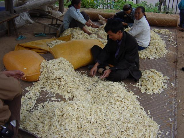Sorting and bagging chips of dried bamboo shoots in Niankeng Village
