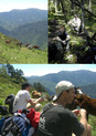 #2: Simon with the horses; Chris and Simon through the forest trail; Peter and Simon taking a break in the sun.
