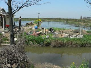 #1: Facing north, looking over the small canal to the shrimp farm