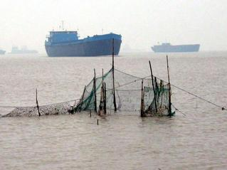 #1: Confluence point about 30 meters beyond the fixed net within the shipping channel of Yangtze River