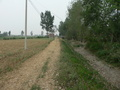 #6: Track and canal, 35 m NE of the confluence
