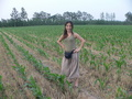 #4: Ah Feng in the confluence cornfield