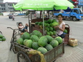#2: Ah Feng selecting a watermelon in Tài'ān