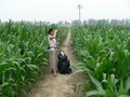 #5: Ah Feng in the confluence cornfield