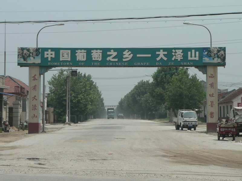 """Hometown of the Chinese grape - Dàzéshān"""