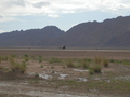 #5: Bike in Desert