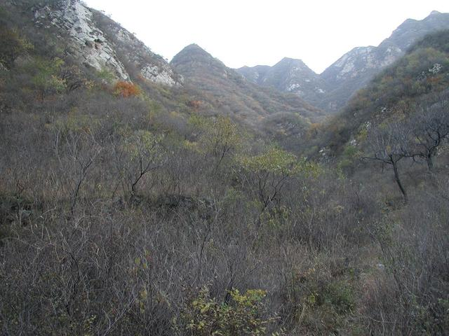 The valley which goes toward the confluence point which is located on the other side of the hill on the left